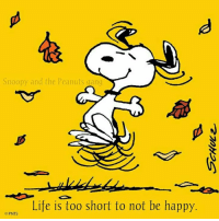 Peanuts: Snoopy and the Peanuts gang  Life is too short to not be happy.  OPNTS