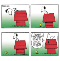 Protect your eyes! 📺👀 peanuts snoopycomics cartoonart cartoon comics snoopy woodstock: SNOOPY COMICS  17  IALWAH5  HAVE TO REMIND  HIM ABOUT  SITTING AT  LEAST SIX  FEET FROM  MY COLOR  TY Protect your eyes! 📺👀 peanuts snoopycomics cartoonart cartoon comics snoopy woodstock