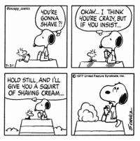 Imagine Woodstock as a shaved bird comicstrip snoopy snoopycomics comics woodstock cartoon snoopygram: @snoopy_comics  GONNA  SHAVE ?!  OKAY.. I THINK  4OU'RE CRAZY, BUT  IF 4OU INSIST...  IL  7-2  1977 United Feature Syndicate, Inc  HOLD STILL, AND I'LL  GIVE YOU A SQUIRT  11  OF SHAVING CREAM... Imagine Woodstock as a shaved bird comicstrip snoopy snoopycomics comics woodstock cartoon snoopygram