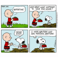 Peppermint Patty broke his house snoopycomics cartoon comics snoopy charliebrown: SNOOPY COMICS  SUPPERTIME  NEVER  MIND!  GOOD GRIEF: WHAT HAPPENED  TO yOUR DOG HOUSE?  I HATE WAITERS WHO  ASK PERSONAL QUESTIONS! Peppermint Patty broke his house snoopycomics cartoon comics snoopy charliebrown
