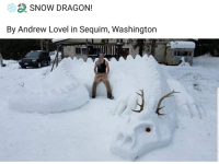 Snow: SNOW DRAGON!  By Andrew Lovel in Sequim, Washington