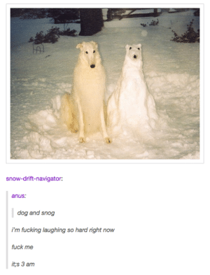 Fucking, Fuck, and Snow: snow-drift-navigator:  anus.  dog and snog  i'm fucking laughing so hard right now  fuck me  it,s 3 am snoggo