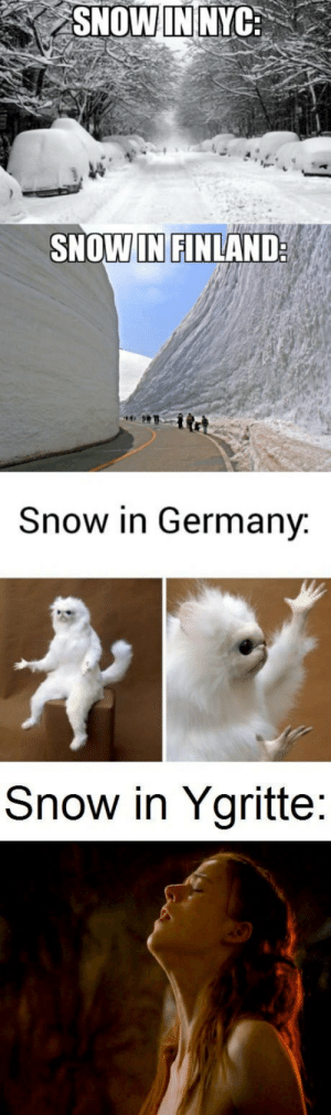 Snow, Nyc, and Finland: SNOW IN NYC:  SNOWIN FINLAND  Snow in Germanv  Snow in Ygritte Snow *snickers*