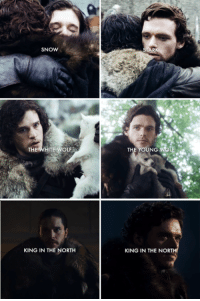 The Wolves of Winterfell •Sirius Stark•: SNOW  THE WHITE WOLF  KING IN THE NORTH  TH  KING IN THE NORT The Wolves of Winterfell •Sirius Stark•