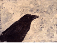 Snowy crow, acrylicpainting on cardboard - I had a hard day today and didn't think I felt like painting a crow this evening, but I'm glad I did 😊 art crowart crows crowsaremymuse snow snowy snowcrow: Snowy crow, acrylicpainting on cardboard - I had a hard day today and didn't think I felt like painting a crow this evening, but I'm glad I did 😊 art crowart crows crowsaremymuse snow snowy snowcrow