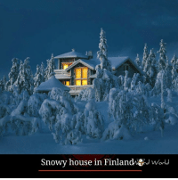 Memes, 🤖, and Snowiness: Snowy house in Finlandwtid World