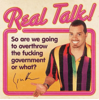 Me irl: So are we going  to overthrow  the fucking  government  or what? Me irl
