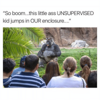 "Ass, Dank, and Boom: ""So boom...this little ass UNSUPERVISED  kid jumps in OUR enclosure RIP Harambe"
