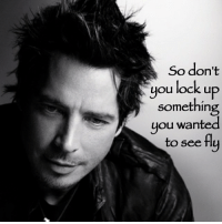 So don't  you lock up  something  you wanted  to see fly RIP Chris Cornell