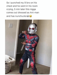 Memes, Ants, and 🤖: So I punched my lil bro on his  chest and he went in his room  crying, 5 min later this nigga  comes out dressed as Ant-man  and has nunchucks - Trending Memes