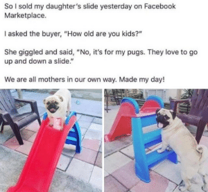 "up and down: So I sold my daughter's slide yesterday on Facebook  Marketplace.  I asked the buyer, ""How old are you kids?""  She giggled and said, ""No, it's for my pugs. They love to go  up and down a slide.""  We are all mothers in our own way. Made my day!"