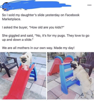 "The best kind of kids: So I sold my daughter's slide yesterday on Facebook  Marketplace.  I asked the buyer, ""How old are you kids?""  She giggled and said, ""No, it's for my pugs. They love to go  up and down a slide.""  We are all mothers in our own way. Made my day! The best kind of kids"