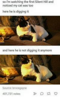 EGAD: so i'm watching the first Silent Hill and  noticed my cat was too  here he is digging it  and here he is not digging it anymore  Source: brvcegayne  401,731 notes EGAD