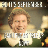 Can I, can I?: SO IT'S SEPTEMBER  CAN PUT MY TREE UP  NOW? Can I, can I?
