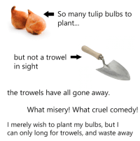 a crying shame: So many tulip bulbs to  plant  but not a trowel  in sight  the trowels have all gone away  What misery! What cruel comedy!  I merely wish to plant my bulbs, but I  can only long for trowels, and waste away a crying shame
