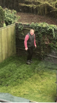 """Dad, Funny, and Smh: """"So my dad put down some new grass in the garden and was flattening it down in the strangest style ever..smh"""" why do i find this so funny 😂😂 https://t.co/jaBMpwwA6s"""
