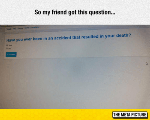 Tumblr, Blog, and Death: So my friend got this question.  Tcb FAQ Pracy Terms & Conddons  Have you ever been in an accident that resulted in your death?  0 Yes  THE META PICTURE lolzandtrollz:Unexpected Question