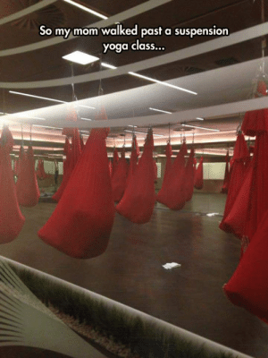 Saw, Tumblr, and Aliens: So my mom walked past a suspension  yoga class... srsfunny:Imagine If This Is The First Sight Aliens Saw When They Made It Here
