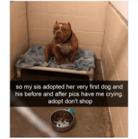 Crying, Memes, and 🤖: so my sis adopted her very first dog and  his before and after pics have me crying.  adopt don't shop
