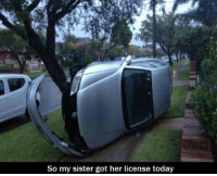 """TAG a your """"bad driver"""" friend!: So my sister got her license today TAG a your """"bad driver"""" friend!"""