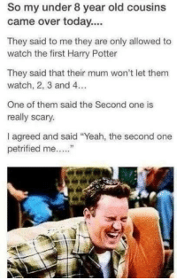 """Just too good.: So my under 8 year old cousins  came over today...  They said to me they are only allowed to  watch the first Harry Potter  They said that their mum won't let them  watch, 2, 3 and 4.  One of them said the Second one is  really scary.  I agreed and said """"Yeah, the second one  petrified me Just too good."""