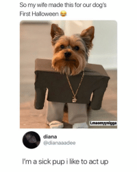 Dogs, Halloween, and Memes: So my wife made this for our dog's  First Halloween  Lmaomyynigga  diana  @dianaaadee  I'm a sick pup i like to act up 😂💀