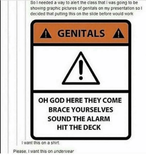 God, Work, and Alarm: So needed a way to alert the class that I was going to be  showing graphic pictures of genitals on my presentation so l  decided that putting this on the slide before would work  ▲ GENITALS ▲  OH GOD HERE THEY COME  BRACE YOURSELVES  SOUND THE ALARM  HIT THE DECK  i want this on a shirt.  Please, iI want this on underwear Genital Alert