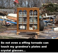 Dank, Glasses, and Tornado: So not even a effing tornado can  touch my grandma's plates and  crystal glasses...