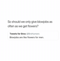 Zero, Flowers, and Girl Memes: So should we only give blowjobs as  often as we get flowers?  Tweets for Bros @BroHumors  Blowjobs are like flowers for men. Soooo never? ( @zero_fucksgirl )