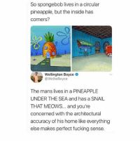 Fucking, Memes, and SpongeBob: So spongebob lives in a circular  pineapple, but the inside has  corners?  Wellington Boyce o  @WellieBoyce  The mans lives in a PINEAPPLE  UNDER THE SEA and has a SNAIL  THAT MEOwS... and you're  concerned with the architectural  accuracy of his home like everything  else makes perfect fucking sense. 🤣lmao