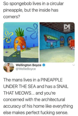 Pineapples are square ?: So spongebob lives in a circular  pineapple, but the inside has  corners?  DANK  MEMEOLOGY  DANK  MEMICIOG  Wellington Boyce  @WellieBoyce  The mans lives in a PINEAPPLE  UNDER THE SEA and has a SNAIL  THAT MEOWS... and you're  concerned with the architectural  accuracy of his home like everything  else makes perfect fucking sense. Pineapples are square ?