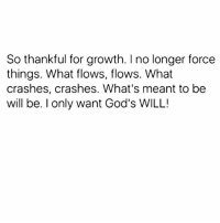 """Be not wise in thine own eyes: fear the Lord, and depart from evil."" (Proverbs‬ ‭3:7‬): So thankful for growth. I no longer force  things. What flows, flows. What  crashes, crashes. What's meant to be  will be. I only want God's WILL! ""Be not wise in thine own eyes: fear the Lord, and depart from evil."" (Proverbs‬ ‭3:7‬)"