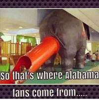 So that's where Alabama  fans come from