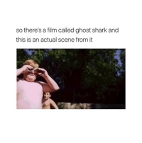 Shark, Ghost, and Film: so there's a film called ghost shark and  this is an actual scene from it Seems legit