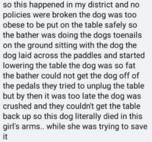 Dog got crushed by hydraulic grooming table at petsmart...why didn't the table have a tag-out and/or deadman switch?: so this happened in my district and no  policies were broken the dog was too  obese to be put on the table safely so  the bather was doing the dogs toenails  on the ground sitting with the dog the  dog laid across the paddles and started  lowering the table the dog was so fat  the bather could not get the dog off of  the pedals they tried to unplug the table  but by then it was too late the dog was  crushed and they couldn't get the table  back up so this dog literally died in this  girl's arms.. while she was trying to save  it Dog got crushed by hydraulic grooming table at petsmart...why didn't the table have a tag-out and/or deadman switch?