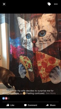 Confused, Memes, and Pizza: So this is how my wife decides to surprise me for  #CincoDeMayo  Feeling confused  See More  I Like  Share  Comment #need If you want to buy one of these pizza-cat shower curtains, you can find them here http://amzn.to/2pmspBL 😍😍