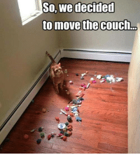 Couch: So, we decided  to move the Couch.