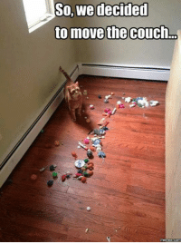 Couch: So, we decided  to move the couch  memes COM