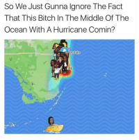 Bitch, Facts, and Hurricane: So We Just Gunna lgnore The Fact  That This Bitch In The Middle Of The  Ocean With A Hurricane Comin?  erdal Oh nah she wildin' 😳😂 https://t.co/kFB3vmumFw