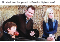 Memes, Anyone Know, and 🤖: So what ever happened to Senator Liptons son? no idea honestly 😂 anyone know?