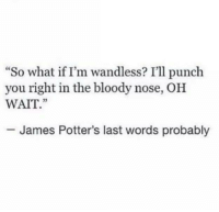 "That made me smile 🙄  -Kreacher: ""So what if I'm wandless? I'll punch  you right in the bloody nose, OH  WAIT.""  James Potter's last words probably That made me smile 🙄  -Kreacher"