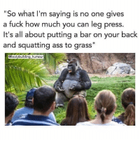 "Real talk y'all💪😂 Via @bodybuilding_humour: ""So what I'm saying is  a fuck how much you can leg press  it's all about putting a bar on your back  and squatting ass to grass""  no one gives  @bodybuilding humour Real talk y'all💪😂 Via @bodybuilding_humour"