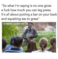 "Ass, Gym, and Fuck: ""So what I'm saying is no one gi  a fuck how much you can leg press.  It's all about putting a bar on your back  and squatting ass to grass""  @GYMMEMESANDMOTIVATION  ves 😂😂😂"