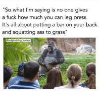 """Ass, Memes, and Bodybuilding: """"So what l'm saying is no one gives  a fuck how much you can leg press.  It's all about putting a bar on your back  and squatting ass to grass""""  @bodybuilding_humour 🤣 - @squat.bench.deadlift @bodybuilding_humour"""
