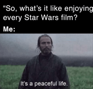 "My cake day wish: ""P E A C E"": ""So, what's it Ilike enjoying  every Star Wars film?  Мe:  It's a peaceful life. My cake day wish: ""P E A C E"""