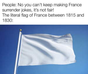 So when people make jokes about the white flag being the flag of France, they're actually correct: So when people make jokes about the white flag being the flag of France, they're actually correct