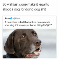 Dumb, Funny, and Police: So y'all just gone make it legal to  shoot a dog for doing dog shit  Rare e》 @Rare  A court has ruled that police can execute  your dog if it moves or barks bit.ly/2hSjXt7 This world is dumb as hell • 👉Follow me @no_chillbruh for more