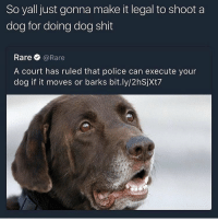 I hope this is fake but you better follow @studentproblemsquotes if you like doggos ✌️🔥: So yall just gonna make it legal to shoot a  dog for doing dog shit  Rare @Rare  A court has ruled that police can execute your  dog if it moves or barks bit.ly/2hSjXt7 I hope this is fake but you better follow @studentproblemsquotes if you like doggos ✌️🔥