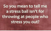 Huh, Memes, and Mean: So you mean to tell me  a stress ball isn't for  throwing at people who  stress you out? Huh! Who knew? 🤷🏻♀️🤣