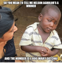gotcha: SO YOU MEAN TO TELL ME NELSON AGHOLORTS A  WHINER  AND THE NUMBER IS1-800-WAH GOTCHA!
